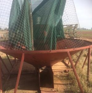 Solo mesh cone bottom