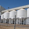 3 million tonnes in the Viterra system so far