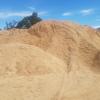 sawdust/animal bedding/ pine sawdust/pine shavings