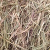 Wheaten Hay 700 m/t 8x4x3