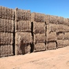 208 Bales Pea Hay For Sale in 8x4x3' Failed Crop Baled