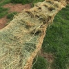 Shedded Oaten Hay Rolls For Sale - See attached Feed Test