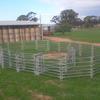 Cattle Yards - Arrow Farmquip