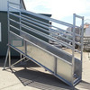 3m Fixed Cattle loading Ramp