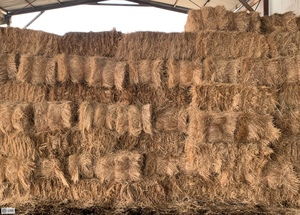 1000 x Pasture Hay Small Squares