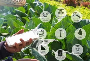 Mecardo Insights - Agriculture is getting its game on