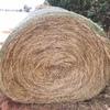 Clover - Rye Grass 50/50% - 200 x 400 KG Approx Rolls
