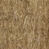Lucerne & Barley mix hay in 8x4x3 bales.