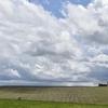 International Farming Corporation Raising $1.5B for U.S. Farmland Fund