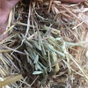 Good Oaten Hay For Sale Ex or Can 8x4x3's Can Deliver