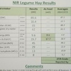 650 Bales of Old Season Vetch Hay