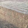 Vetch Hay NEW SEASON