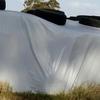 Ryegrass Silage  6x4x3 - 200 x 650 KG Approx Bales