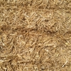 Oaten Straw Hay - Large Squares @ $95 per Tonne