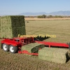 HAY CONTRACTOR WITH 2 X BALERS & BALE STACKER! READY TO WORK