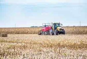 Corn Stubble wanted/ $$ per ton