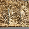 Small bales windrowed Barley Straw for sale