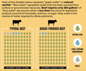 Beef is NOT a Water hog