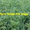 Wanted Standing  Wheaten/Vetch Mix Crops & Wheat Crops For Hay On Share Basis Or Standing