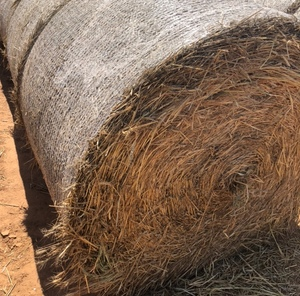 Wheaten Hay Rolls For Sale Ex Farm or Can Freight