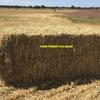 500mt Wheaten Hay 8x4x3 Bales 'New Season'
