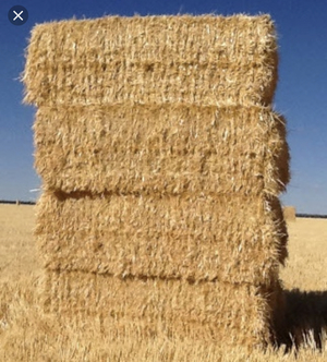 Expression Of Interest for Barley and Wheaten Straw 8x4x3