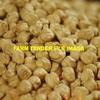 Desi Chickpea Seed 1t Bulkas