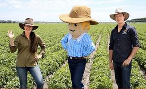 How George the Farmer was born