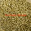 WANTED Rye Grain