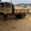 1981 international tipper with grain bin