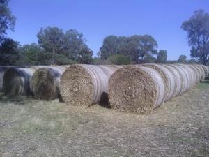 Wheaten straw. 5x4 rolls.