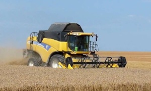 World Grain Update - Wheat production concerns in Europe spook the market…