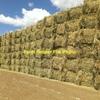 600 Oaten/Clover Hay x 650-700kg 8x4x3 Bales ex farm