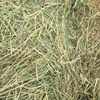 Rye Grass Hay - Small Squares