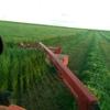 Oaten Hay 8x4x3-500 x 5500 KG Approx Bales #### Discount For Multiple Loads ####. - Hay & Fodder