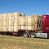 2 loads of 5x4 Oaten Hay Rolls For Sale
