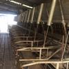 Herringbone Dairy 18 a side - make an offer