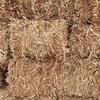 Pea straw