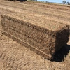 190mt of New Seasons Vetch Hay For Sale in 8x4x3's