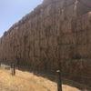 200mt Oat/Rye/Clover Hay 8x4x3 Bales