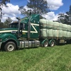 Barley Silage 4x4 Rounds New Season Hay Haylage excellent quality