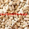 Safflower wanted in Bulk or Bags