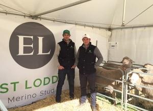 Benchmarking power draws East Loddon Merinos to RamSelect