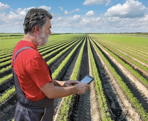 IoT in agriculture, from oysters to apples