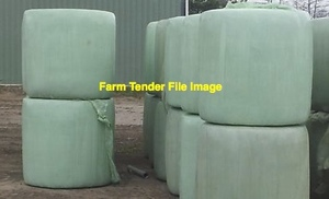 Top Quality Irrigated Ryegrass Clover Silage
