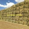 Oaten Hay 8x4x3 Bales (1 Load Only)
