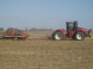 BCG - Tips to get the best start to sowing or seeding