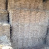Rye & Clover Hay Small Squares