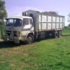 HINO DOLPHIN - Flat Top Tipper with Nixon Bulk Bin with rear chute and door.