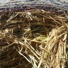Oaten Hay Rolls For Sale Ex or Can Deliver Locally
